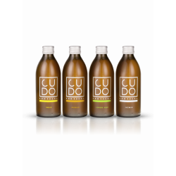 Cudo Kombucha Mix 12x500ml