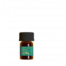 Cannabis essentials hemp essential oil 2ml