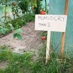 LeanCraft Tabliczka do roślin, warzyw i ogrodu – XL