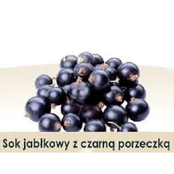 Wiatrowy Sad Apple juice with black currant 3l