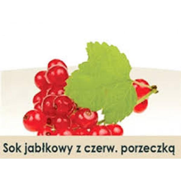 Wiatrowy Sad Sok jabłkowy z czerwoną porzeczką 300ml