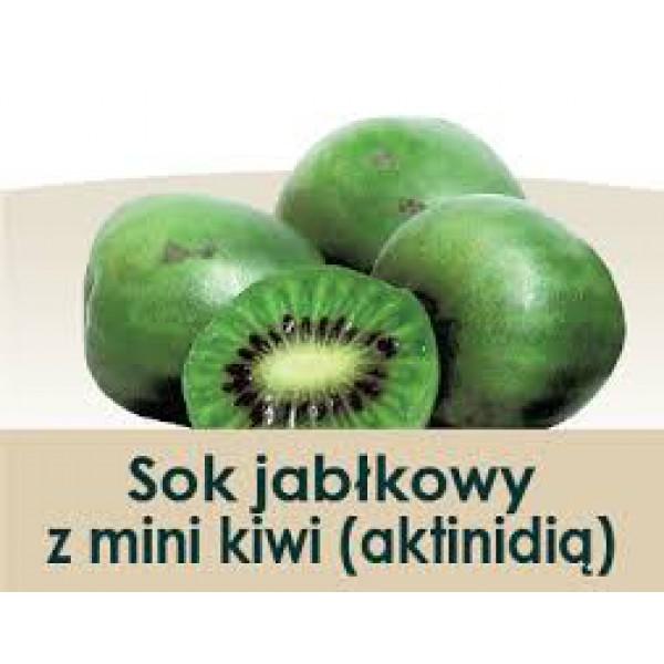 Wiatrowy Sad Sok jabłkowy z mini kiwi 3l
