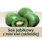 Wiatrowy Sad Apple juice with mini kiwi 300ml