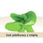 Wiatrowy Sad Apple juice with mint 5l