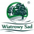 Wiatrowy