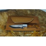 Ztefan Damascus steel knife NM-017 set with an exotic wood box
