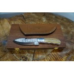 Ztefan Damascus steel knife NM-024 set with an exotic wood box